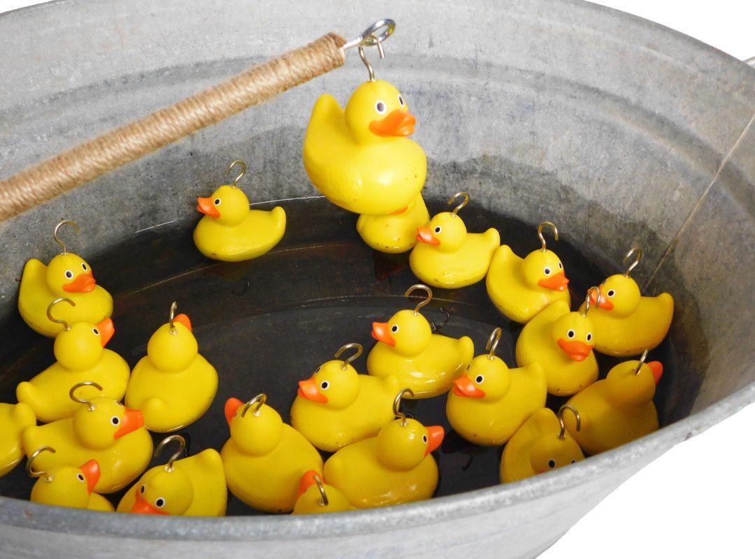 Hook-A-Duck Vintage 2