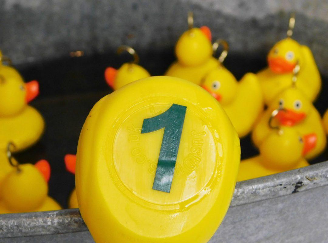 Hook a duck 3